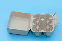 Pulp-tray